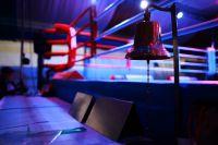 Boxeo: César Antín rumbo a su pelea en Alemania