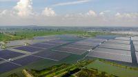 Energía solar proporcionará casi mitad de demanda eléctrica de China en 2060 según estudio